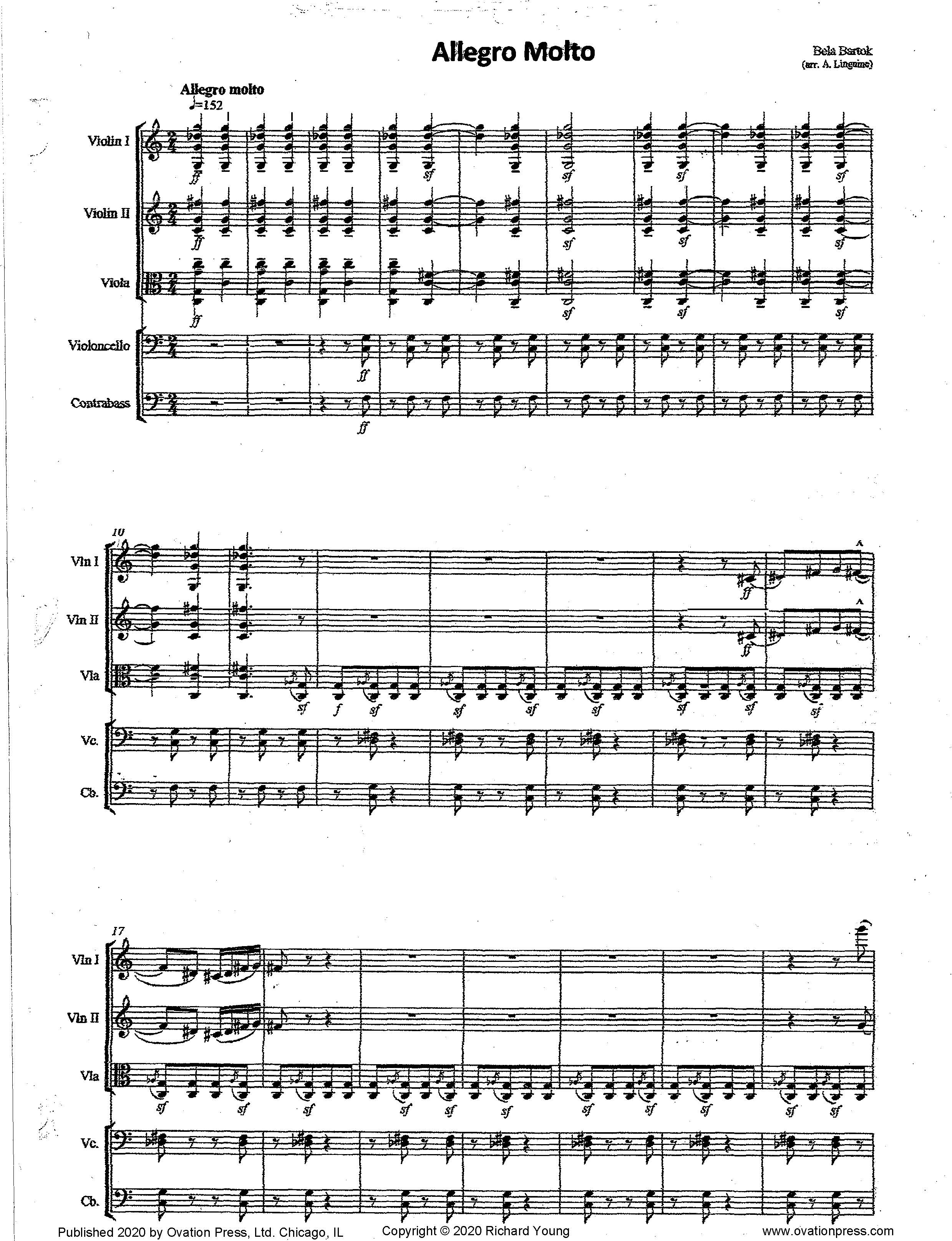Bartok Allegro Molto (For Intermediate String Orchestra)